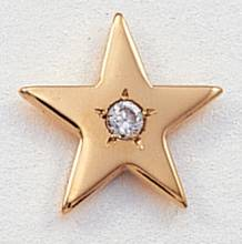 Large Flat Star with Gem Lapel Pin #CL-9G