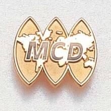 Custom Business Lapel Pin – World Map Design #843