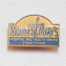 Custom Health Care Lapel Pin – Hospital Logo Design #950