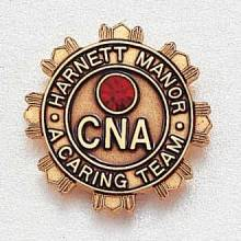 Custom Nursing Lapel Pin – CNA Design #964