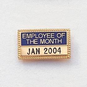 Engraved Employee & Volunteer of the Year/Month Lapel Pin #471-A