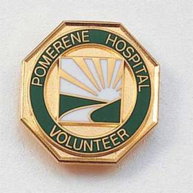 Custom Volunteer Lapel Pin – Sun Design #561