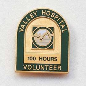 Custom Volunteer Lapel Pin – Arch Design #565