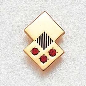Custom Employee Lapel Pin #667