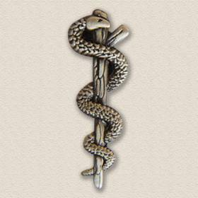 Custom Association Lapel Pin – Caduceus Design #9001