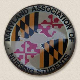 Custom Nursing Pin – Maryland Design #9033