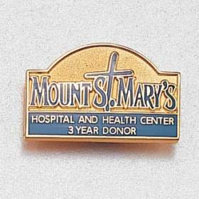 Custom Health Care Lapel Pin – Hospital Logo Design #950